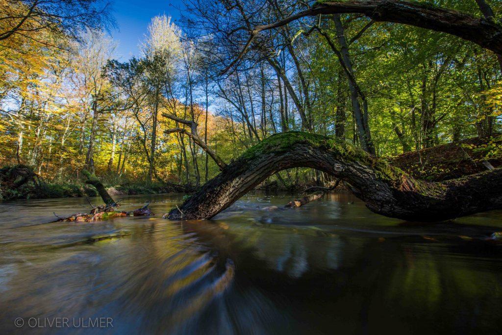 Fluss - Oliver Ulmer Fotografie